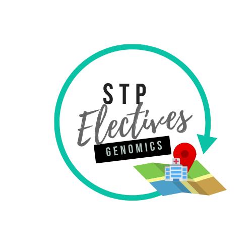 STP Electives |Frankie